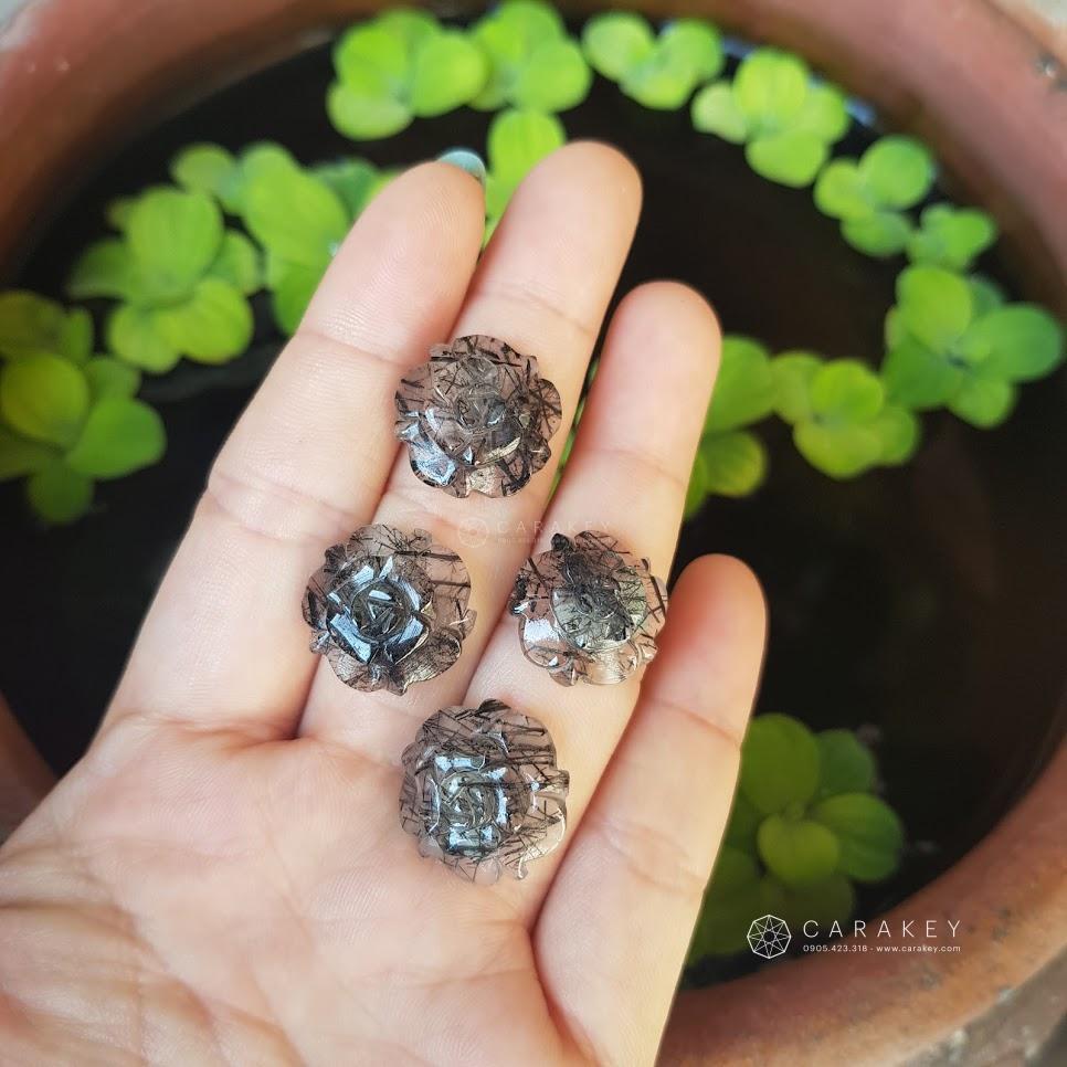 Hoa mẫu đơn tóc đen